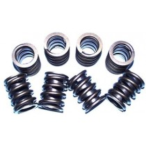 Big Block Dual Valve Spring Set