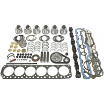Hemi 6 Engine Premium Rebuild Package (Customisable)