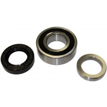 AP Rear Bearing and Seal KIT.jpg