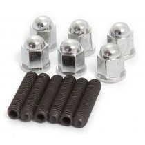 Side Plate Stud and chrome cap nut set IMG_8563.jpg