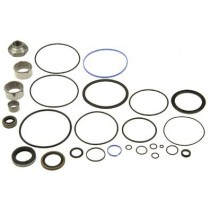 Power Steering BOX Rebuild Kit : Suit VE -CM