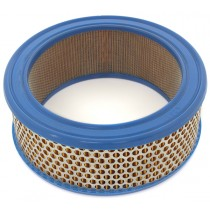 Weber Air Cleaner Filter Element IMG_3113.jpg